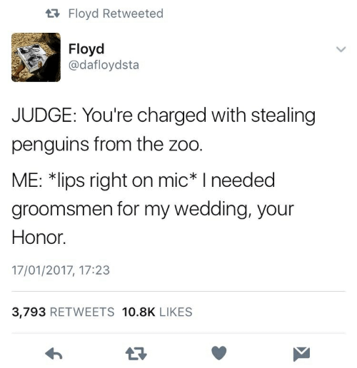 """Groomsmen: tRFloyd Retweeted  Floyd  @dafloydsta  JUDGE: You're charged with stealing  penguins from the zoo.  ME: 치ips right on mic"""" I needed  groomsmen for my wedding, your  Honor.  17/01/2017, 17:23  3,793 RETWEETS 10.8K LIKES  17"""