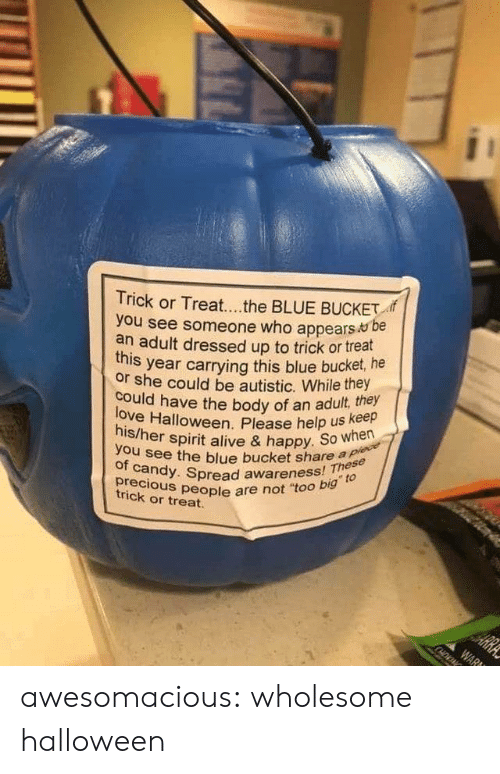"Dressed Up: Trick or Treat...the BLUE BUCKET  you see someone who appears be  an adult dressed up to trick or treat  year carrying this blue bucket, he  this  or she could be autistic. While they  love Halloween. Please help us keep  his/her spirit alive & happy. So when  could have the body of an adult, they  you see the blue bucket share a plece  of candy. Spread awareness! These  precious people are not ""too big to  HE  trick or treat.  ARRA  WAR awesomacious:  wholesome halloween"