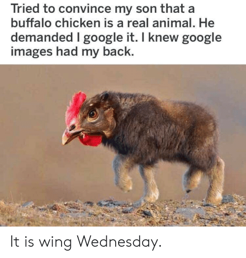 Google, Animal, and Buffalo: Tried to convince my son that a  buffalo chicken is a real animal. He  demanded google it. I knew google  images had my back. It is wing Wednesday.
