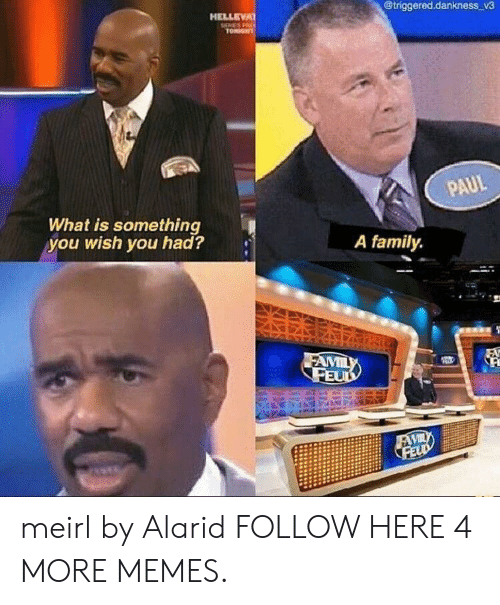 Family Feud: @triggered.dankness v3  HELLEVA  SHERES P  TONDGT  PAUL  What is something  you wish you had?  A family  FAMILY  FEUD  FAVILY  FELD meirl by Alarid FOLLOW HERE 4 MORE MEMES.