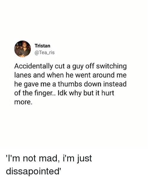 Memes, Mad, and 🤖: Tristan  @Tea ris  Accidentally cut a guy off switching  lanes and when he went around me  he gave me a thumbs down instead  of the finger.. Idk why but it hurt  more. 'I'm not mad, i'm just dissapointed'