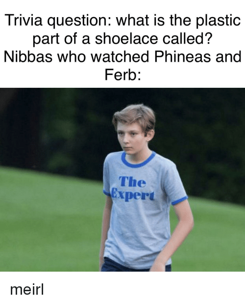 Phineas and Ferb: Trivia question: what is the plastic  part of a shoelace called?  Nibbas who watched Phineas and  Ferb:  The  Expert meirl