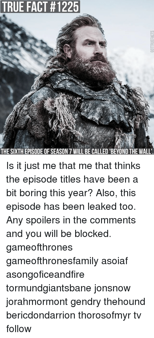 walle: TRUE  FACT #1225  THE SIXTH EPISODE OF SEASON 7 WILL BE CALLED 'BEYOND THE WALL Is it just me that me that thinks the episode titles have been a bit boring this year? Also, this episode has been leaked too. Any spoilers in the comments and you will be blocked. gameofthrones gameofthronesfamily asoiaf asongoficeandfire tormundgiantsbane jonsnow jorahmormont gendry thehound bericdondarrion thorosofmyr tv follow