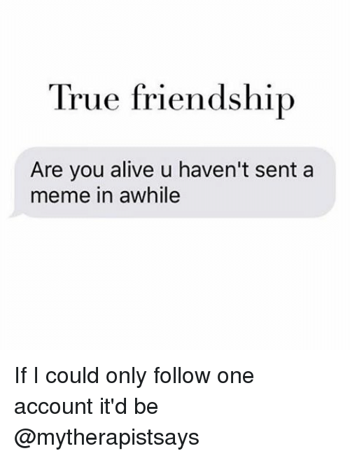 Alive, Meme, and Memes: True friendship  Are you alive u haven't sent a  meme in awhile If I could only follow one account it'd be @mytherapistsays