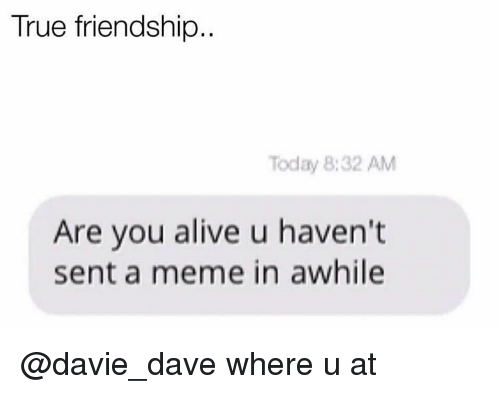 Dank Memes, Friendship, and Davis: True friendship  Today 8:32 AM  Are you alive u haven't  sent a meme in awhile @davie_dave where u at