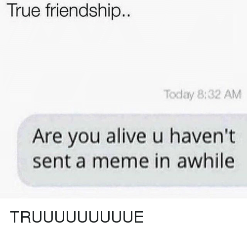 Alive, Meme, and Memes: True friendship  Today 8:32 AM  Are you alive u haven't  sent a meme in awhile TRUUUUUUUUUE