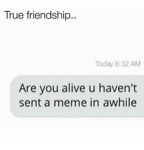 Alive, Meme, and True: True friendship..  Today 8:32 AM  Are you alive u haven't  sent a meme in awhile