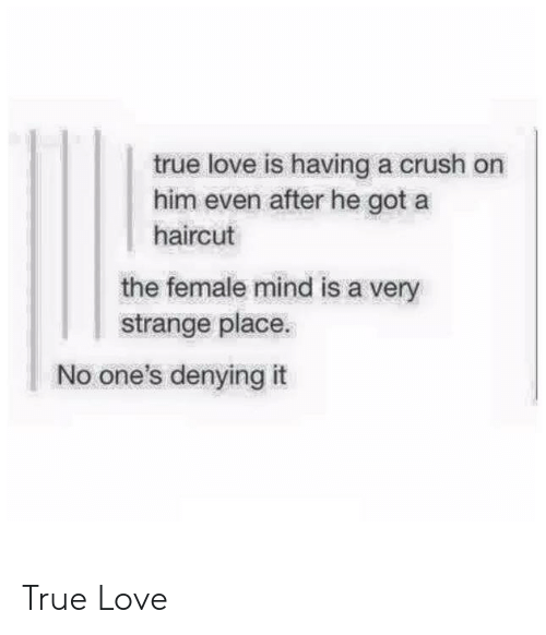True Love Is Having A Crush On Him Even After He Got A Haircut The Female Mind Is A Very Strange Place No One S Denying It True Love Crush Meme On