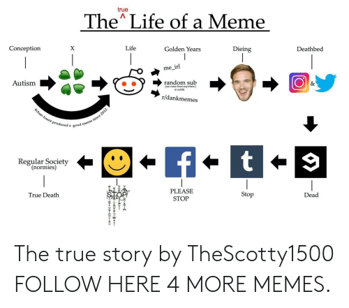 dieing: true  The Life of a Meme  Conception  Life  Golden Years  Dieing  Deathbed  me irl  Autism  (can come from anywhere)  in reddit  r/dankmemes  Prodosed a good  Regular Society  (normies)  PLEASE  STOP  True Death  Stop  Dead The true story by TheScotty1500 FOLLOW HERE 4 MORE MEMES.