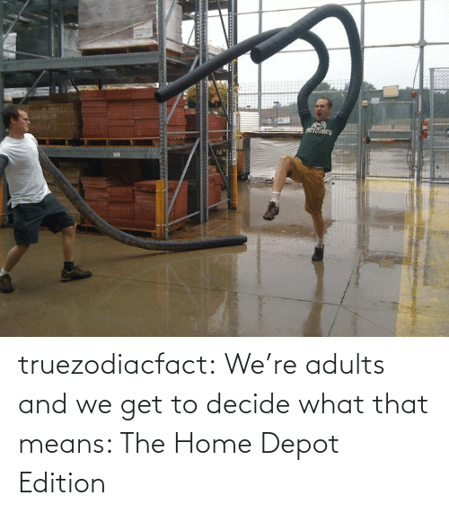 Adults: truezodiacfact:  We're adults and we get to decide what that means: The Home Depot Edition