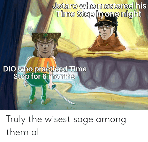 Sage: Truly the wisest sage among them all