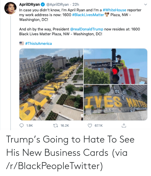 Going To: Trump's Going to Hate To See His New Business Cards (via /r/BlackPeopleTwitter)