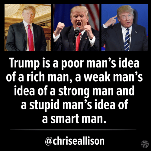 Memes, Trump, and Strong: Trump is a poor man's idea  of a rich man, a weak man's  idea of a strong man and  a stupid man's idea of  a smart man.  @chriseallison  Other98