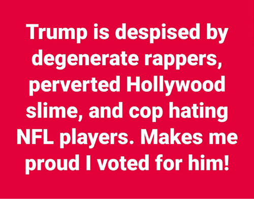 perverted: Trump is despised by  degenerate rappers,  perverted Hollywood  slime, and cop hating  NFL players. Makes me  proud I voted for him