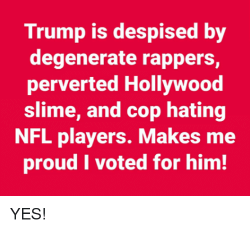 perverted: Trump is despised by  degenerate rappers,  perverted Hollywood  slime, and cop hating  NFL players. Makes me  proud I voted for him! YES!