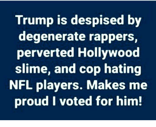 perverted: Trump is despised by  degenerate rappers,  perverted Hollywood  slime, and cop hating  NFL players. Makes me  proud I voted for him!