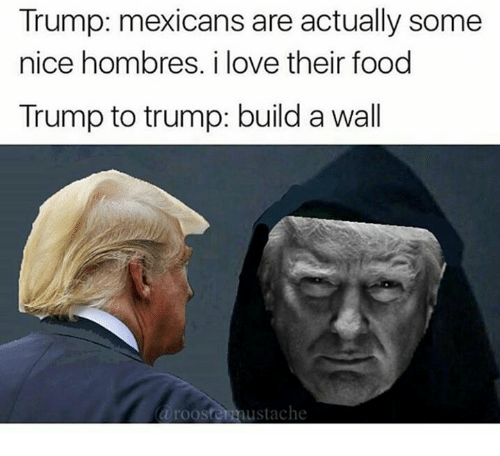 Trump Build A Wall: Trump: mexicans are actually some  nice hombres. i love their food  Trump to trump: build a wall  a rooster austache