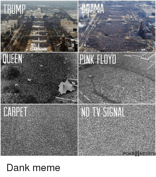 Dank, Meme, and Memes: TRUMP  QUEEN  CARPET  PINK FLOYD  NU EV SIGNAL Dank meme