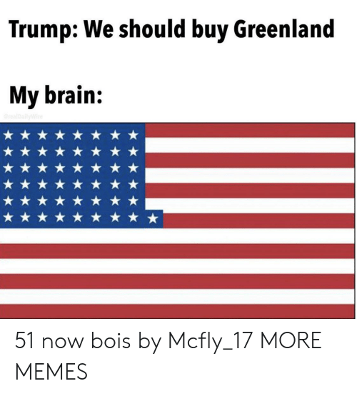 greenland: Trump: We should buy Greenland  My brain:  realDallyWire 51 now bois by Mcfly_17 MORE MEMES