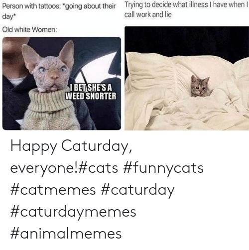 """Cats, Caturday, and I Bet: Trying to decide what llness I have when I  call work and lie  Person with tattoos: """"going about their  day  Old white Women:  I BET SHE'S A  WEED SNORTER Happy Caturday, everyone!#cats #funnycats #catmemes #caturday #caturdaymemes #animalmemes"""