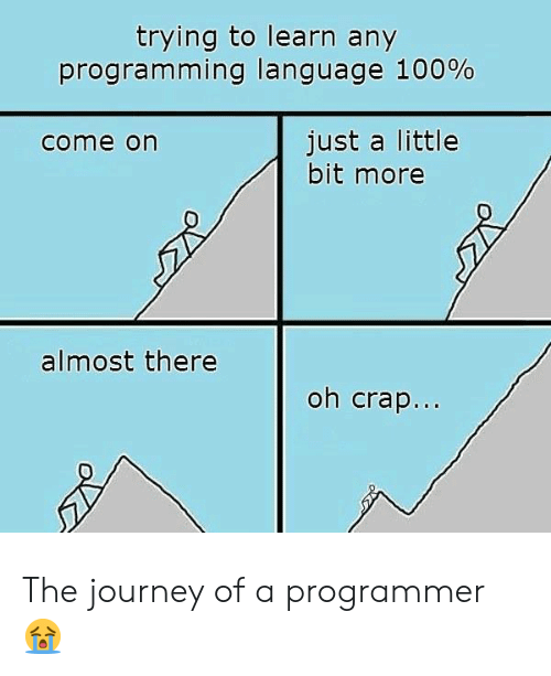crap: trying to learn any  programming language 100%  just a little  bit more  come on  almost there  oh crap... The journey of a programmer 😭
