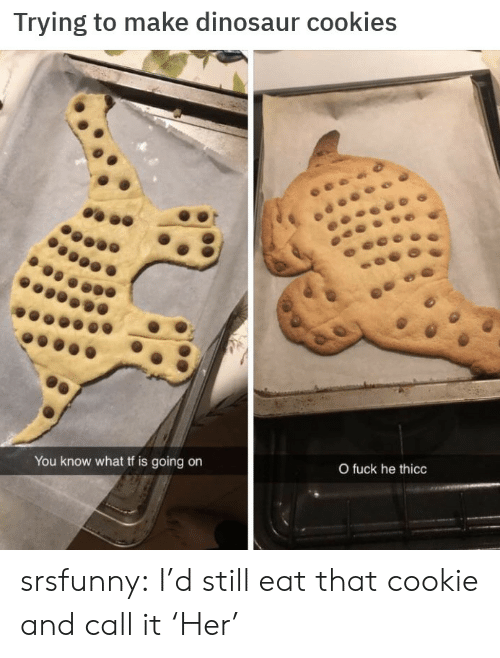 He Thicc: Trying to make dinosaur cookies  You know what tf is going on  O fuck he thicc srsfunny:  I'd still eat that cookie and call it 'Her'