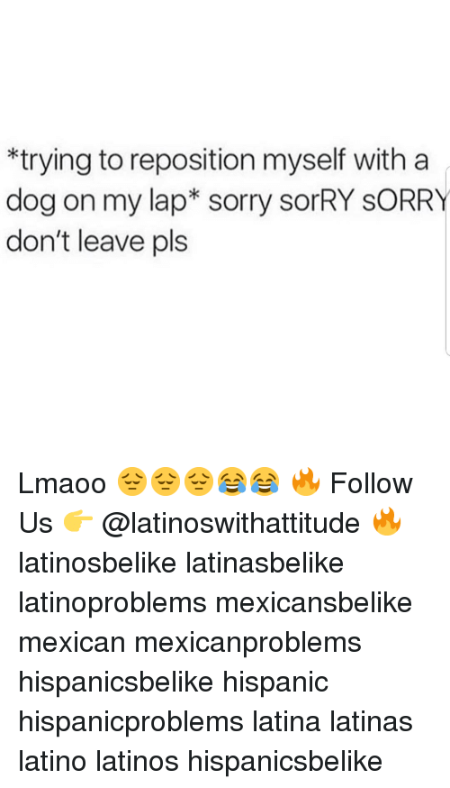 Latinos, Memes, and Sorry: *trying to reposition myself with a  dog on my lap* sorry sorRY SORRY  don't leave pls Lmaoo 😔😔😔😂😂 🔥 Follow Us 👉 @latinoswithattitude 🔥 latinosbelike latinasbelike latinoproblems mexicansbelike mexican mexicanproblems hispanicsbelike hispanic hispanicproblems latina latinas latino latinos hispanicsbelike