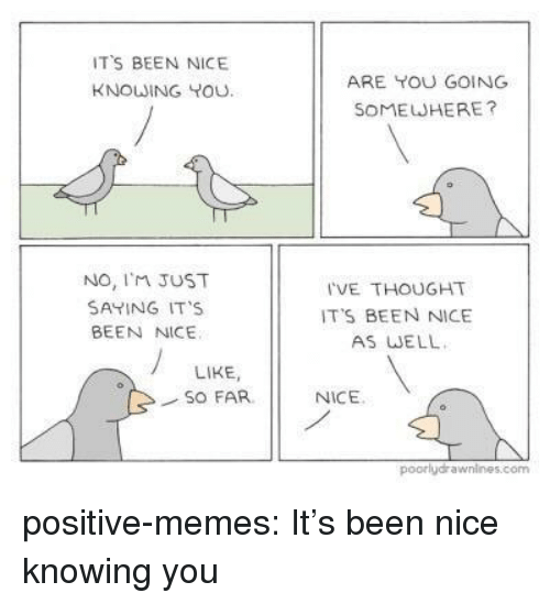 Im Just Saying: TS BEEN NICE  KNOWING YOU  ARE YOU GOING  SOMEWHERE?  No, I'M JUST  SAYING IT'S  BEEN NICE  I'VE THOUGHT  IT'S BEEN NICE  AS WELL  LIKE,  SO FAR  NICE  poorlydrawnines.com positive-memes:  It's been nice knowing you