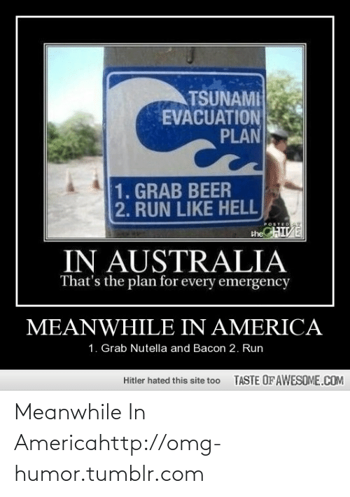 America, Beer, and Omg: TSUNAMI  EVACUATION  PLAN  1. GRAB BEER  2. RUN LIKE HELL  CHIVE  POSTEDAY  the  IN AUSTRALIA  That's the plan for every emergency  MEANWHILE IN AMERICA  1. Grab Nutella and Bacon 2. Run  TASTE OFAWESOME.COM  Hitler hated this site too Meanwhile In Americahttp://omg-humor.tumblr.com