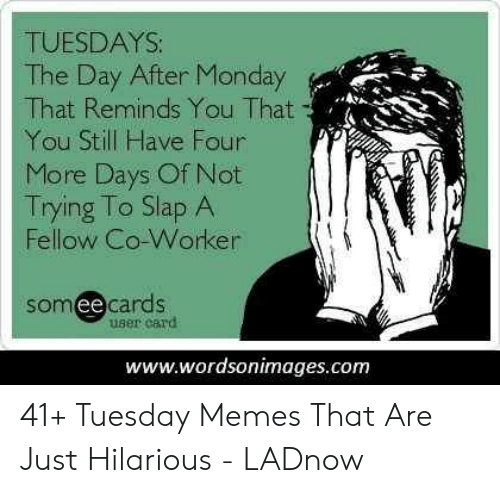 Memes, Monday, and Hilarious: TUESDAYS:  The Day After Monday  That Reminds You That  You Still Have Four  More Days Of Not  Trying To Slap A  Fellow Co-Worker  somee cards  user card  www.wordsonimages.com 41+ Tuesday Memes That Are Just Hilarious - LADnow