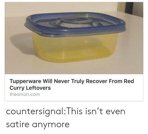 Target, Tumblr, and Blog: Tupperware Will Never Truly Recover From Red  Curry Leftovers  theonion.com countersignal:This isn't even satire anymore