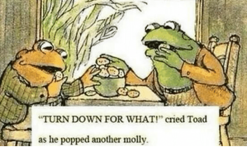 25 Best Memes About Slippy Toad Slippy Toad Memes