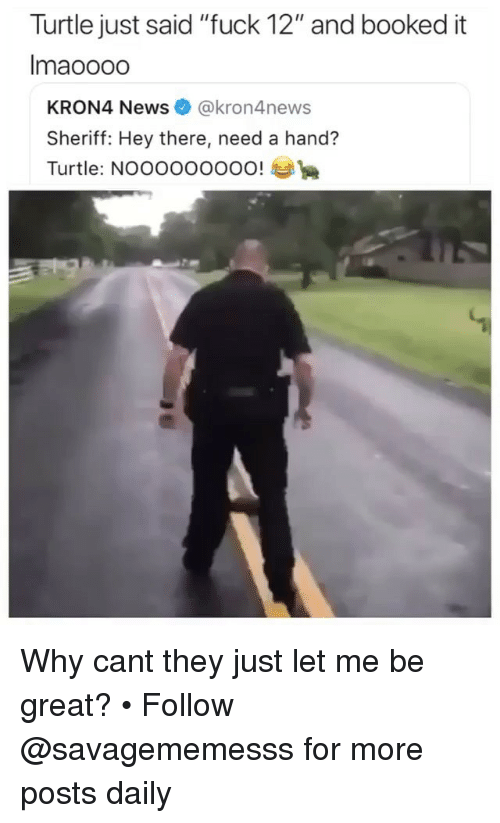 """Memes, News, and Fuck: Turtle just said """"fuck 12"""" and booked it  Imaoooo  KRON4 News@kron4news  Sheriff: Hey there, need a hand?  Turtle: NOOOOOOOOO! Why cant they just let me be great? • Follow @savagememesss for more posts daily"""