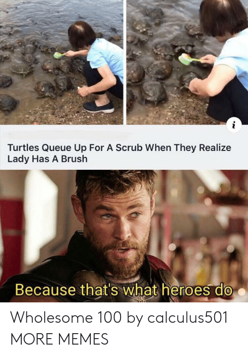 Thats What: Turtles Queue Up For A Scrub When They Realize  Lady Has A Brush  Because that's what heroes do Wholesome 100 by calculus501 MORE MEMES