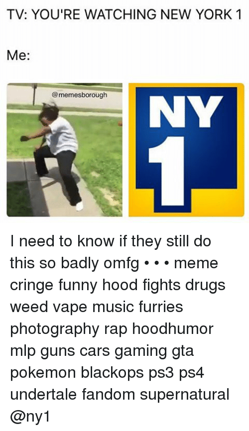 TV YOU'RE WATCHING NEW YORK 1 Me Memesborough NY I Need to