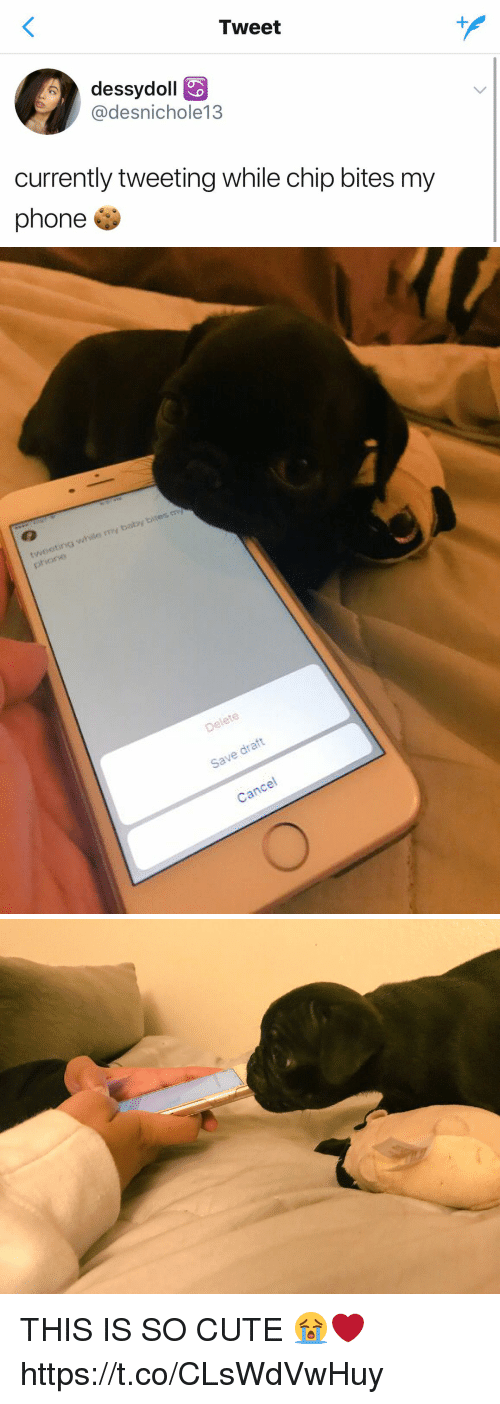 Cute, Funny, and Phone: Tweet  dessydoll  @desnichole13  currently tweeting while chip bites my  phone   tweeting while my baby bites m  Save draft  Cancel THIS IS SO CUTE 😭❤️ https://t.co/CLsWdVwHuy