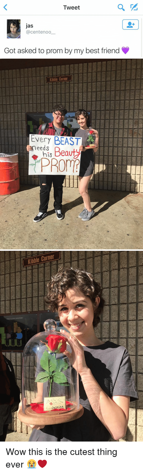 Smy: Tweet  Jas  (a centenoo  Got asked to prom by my best friend   Kibble Corner  Every BEAST  needs  his Beauty  PROM  垂   Kibble Corner  smi Wow this is the cutest thing ever 😭❤