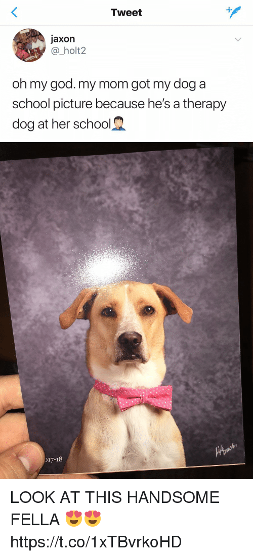 God, Oh My God, and School: Tweet  jaxon  @_holt2  oh my god. my mom got my dog a  school picture because he's a therapy  dog at her school   017-18 LOOK AT THIS HANDSOME FELLA 😍😍 https://t.co/1xTBvrkoHD