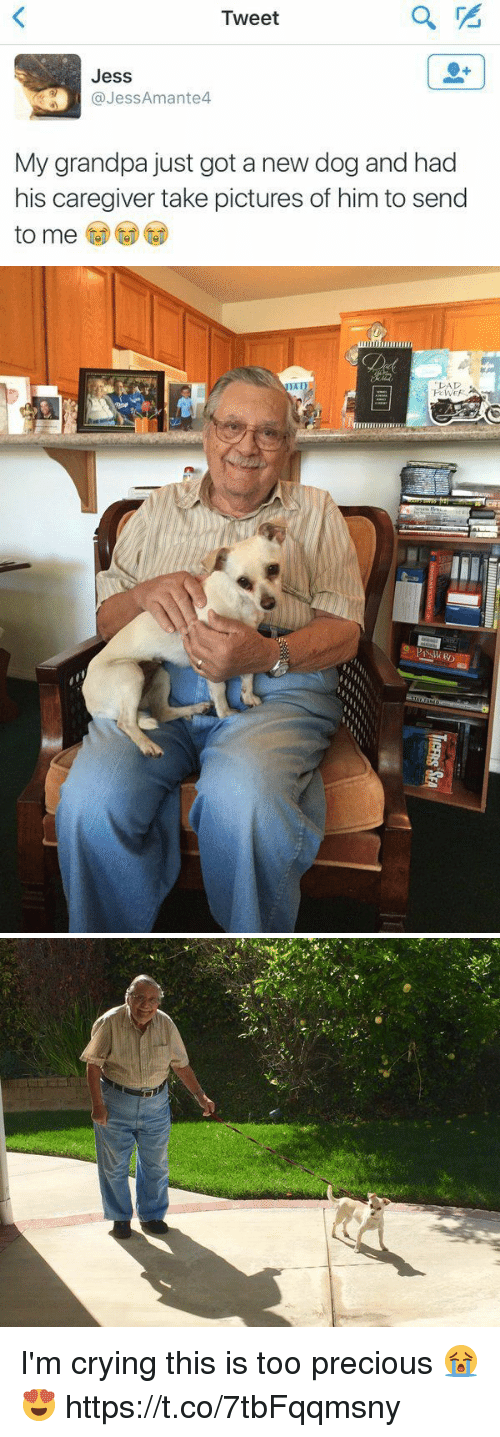 Crying, Precious, and Grandpa: Tweet  Jess  aJessAmante4  My grandpa just got a new dog and had  his caregiver take pictures of him to send  to me  to me CDC) I'm crying this is too precious 😭😍 https://t.co/7tbFqqmsny