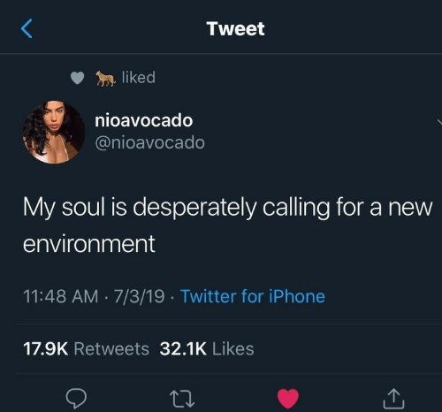 Iphone, Twitter, and Soul: Tweet  liked  nioavocado  @nioavocado  My soul is desperately calling for a new  environment  11:48 AM 7/3/19 Twitter for iPhone  17.9K Retweets 32.1K Likes