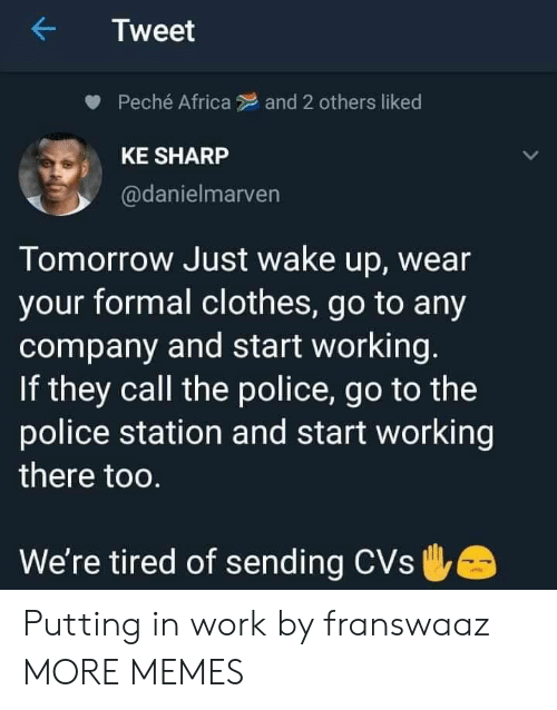 CVS: Tweet  Peché Africa  and 2 others liked  KE SHARP  @danielmarven  Tomorrow Just wake up, wear  your formal clothes, go to any  company and start working.  If they call the police, go to the  police station and start working  there too.  We're tired of sending CVs Putting in work by franswaaz MORE MEMES