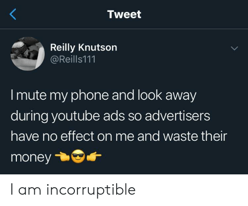 Mute: Tweet  Reilly Knutson  @Reills111  I mute my phone and look away  during youtube ads so advertisers  have no effect on me and waste their  money I am incorruptible