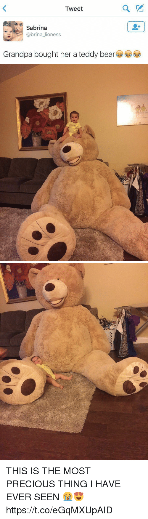 Funny, Precious, and Awkward: Tweet  ,  Sabrina  @brina_lioness  Grandpa bought her a teddy bear  섭섭 THIS IS THE MOST PRECIOUS THING I HAVE EVER SEEN 😭😍 https://t.co/eGqMXUpAID