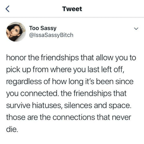 Dank, Connected, and Space: Tweet  Too Sassy  @lssaSassyBitch  honor the friendships that allow you to  pick up from where you last left off,  regardless of how long it's been since  you connected. the friendships that  survive hiatuses, silences and space.  those are the connections that never  le.