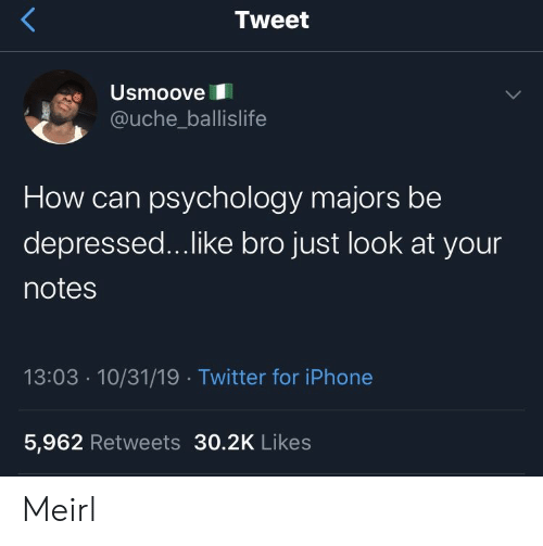Psychology: Tweet  Usmoove  @uche_ballislife  How can psychology majors be  depressed...like bro just look at your  notes  13:03 10/31/19 Twitter for iPhone  5,962 Retweets 30.2K Likes Meirl