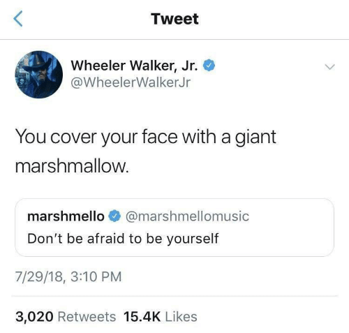 Be Afraid: Tweet  Wheeler Walker, Jr.  @WheelerWalkerJr  You cover your face with a giant  marshmallow.  marshmello  @marshmellomusic  Don't be afraid to be yourself  7/29/18, 3:10 PM  3,020 Retweets 15.4K Likes