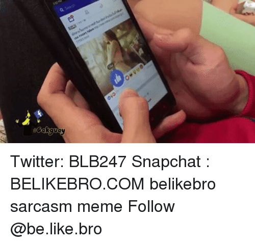 Be Like, Meme, and Memes: Twitter: BLB247 Snapchat : BELIKEBRO.COM belikebro sarcasm meme Follow @be.like.bro
