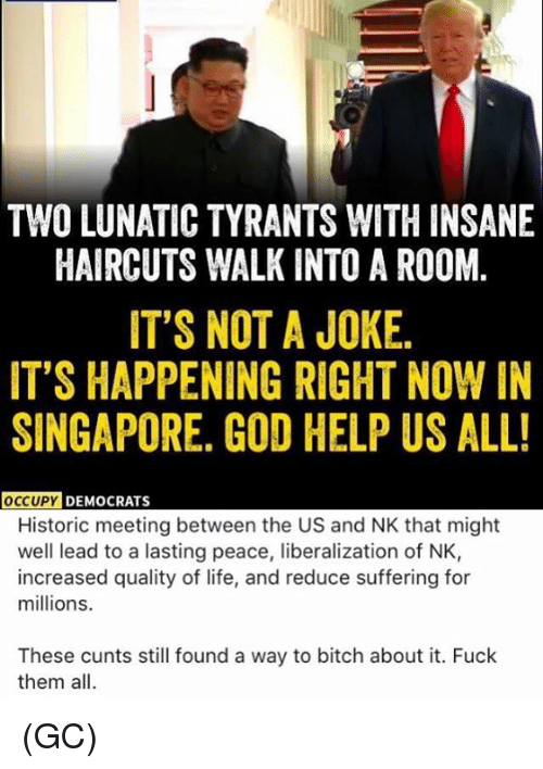 Bitch, God, and Life: TWO LUNATIC TYRANTS WITH INSANE  HAIRCUTS WALK INTO A ROOM.  IT'S NOT A JOKE.  IT'S HAPPENING RIGHT NOW IN  SINGAPORE. GOD HELP US ALL!  DY DEMOCRATS  Historic meeting between the US and NK that might  well lead to a lasting peace, liberalization of NK,  increased quality of life, and reduce suffering for  millions.  These cunts still found a way to bitch about it. Fuck  them all. (GC)