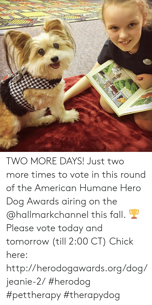 Hallmarkchannel: TWO MORE DAYS! Just two more times to vote in this round of the American Humane Hero Dog Awards airing on the @hallmarkchannel this fall. 🏆 Please vote today and tomorrow (till 2:00 CT)  Chick here: http://herodogawards.org/dog/jeanie-2/ #herodog #pettherapy #therapydog