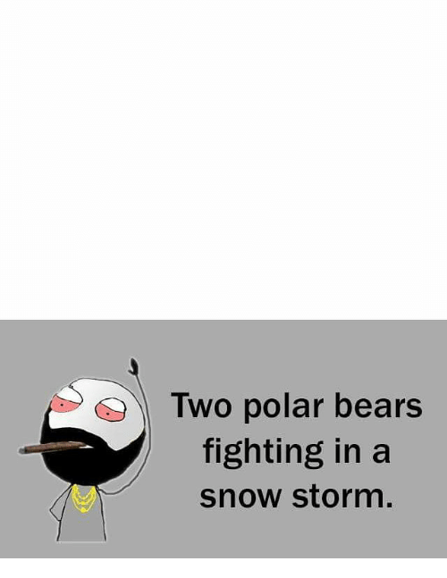 snow storm: Two polar bears  fighting in a  snow storm,